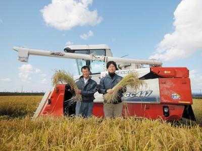 農家から直接お届けする新潟の美味しいお米です。
