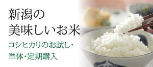 新潟の美味しいお米