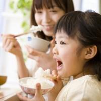 【新米予約】有機栽培米コシヒカリ(白米)2kg