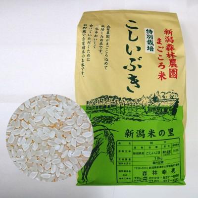 【毎回10%増量】特別栽培米こしいぶき(白米)10kg 定期12回コース