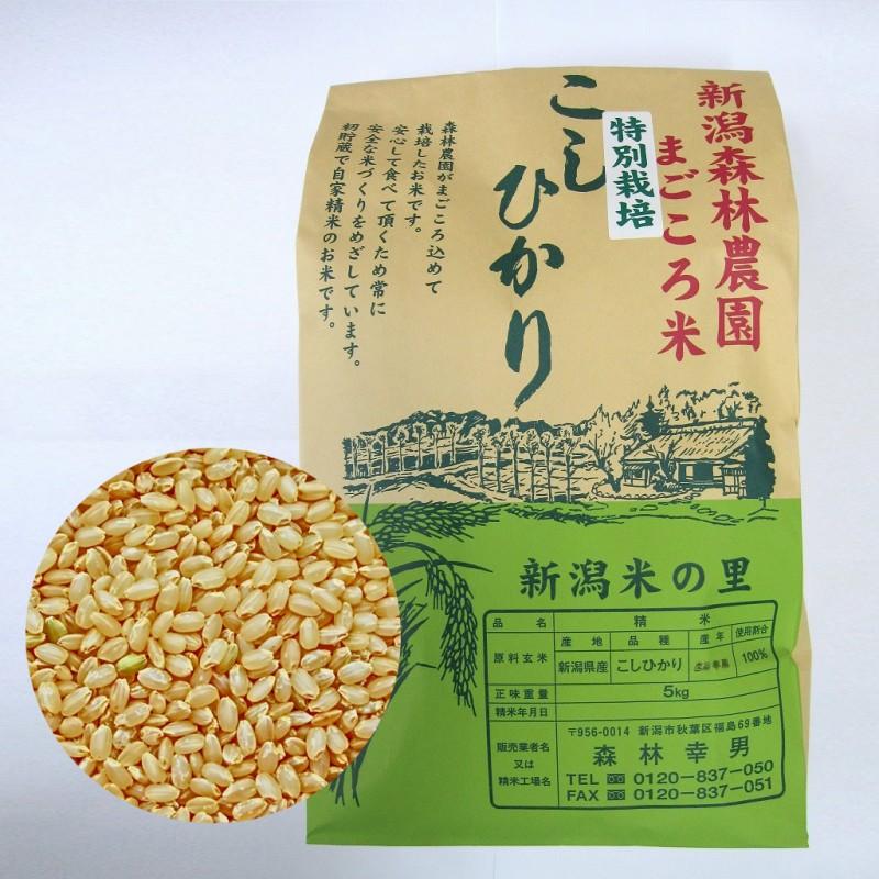 特別栽培米コシヒカリ(玄米)5kg