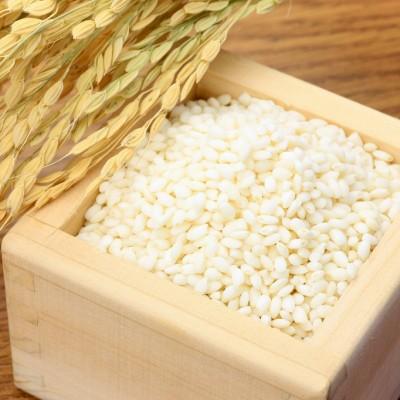 【新米予約】特別栽培米こがねもち(白米)5kg