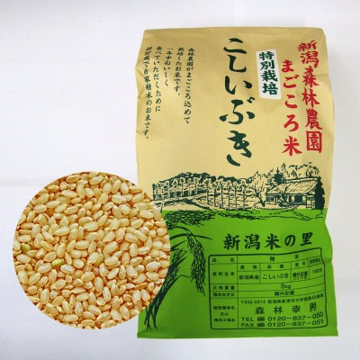 【新米予約】特別栽培米こしいぶき(玄米)5kg