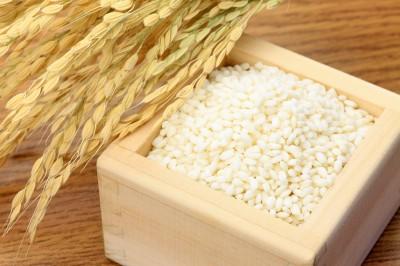 新潟県産こがねもちは、もち米の最高級品です。