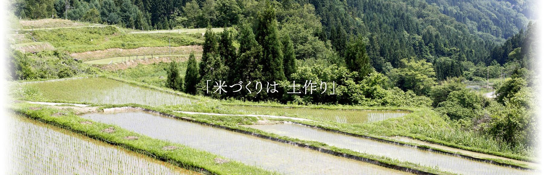 米作りは土作り