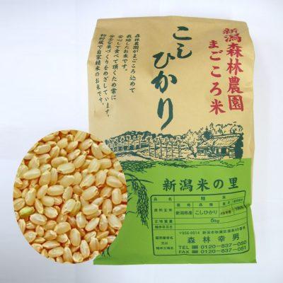 【新米予約】まごころ米 コシヒカリ(玄米)5kg