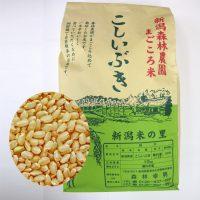 まごころ米 こしいぶき(玄米)10kg