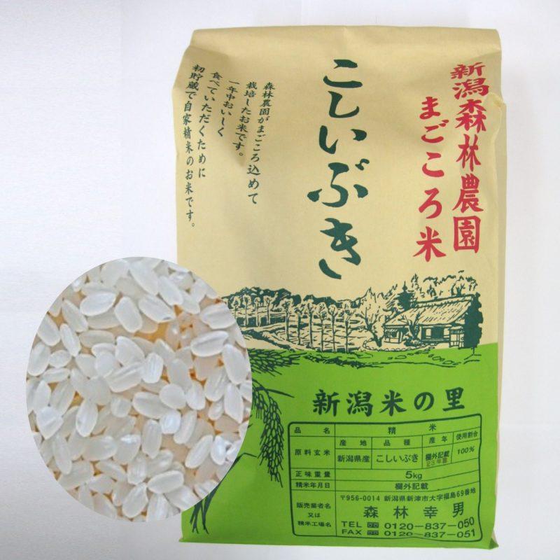 【毎回10%増量】まごころ米 こしいぶき(白米)5kg 定期6回コース