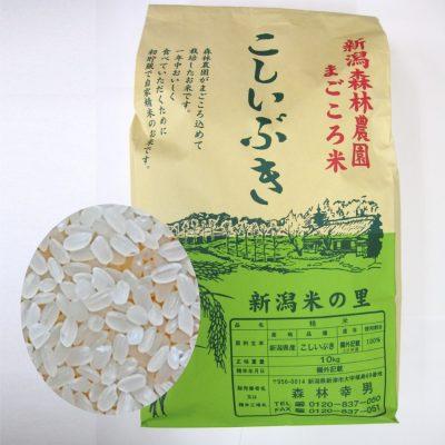 【毎回10%増量】まごころ米 こしいぶき(白米)5kg 定期12回コース